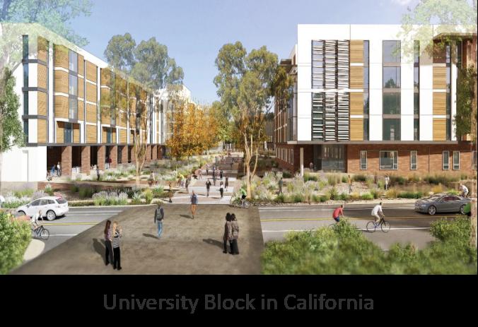 University Block, California